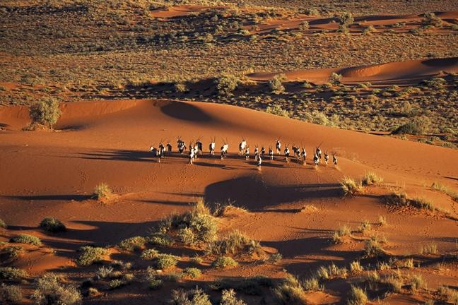Kalahari-Desert00.jpg