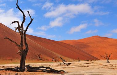 Namib%201%201.jpg