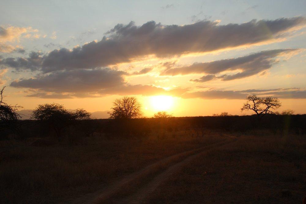 sunset_karongwe2.JPG