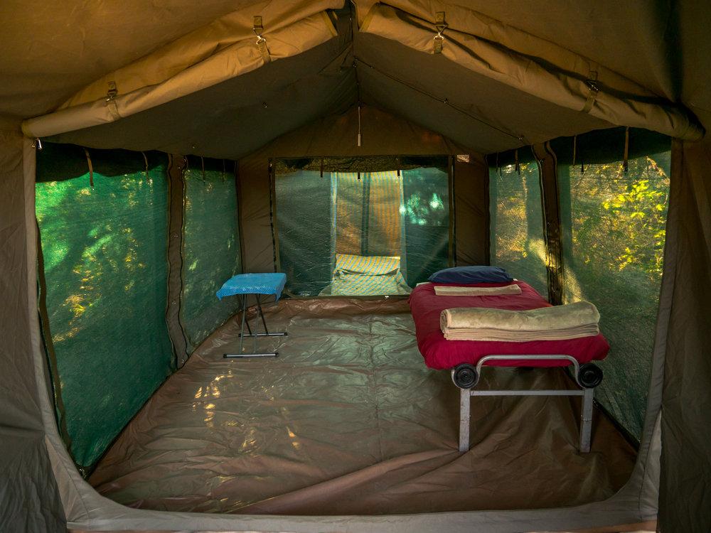 New tent - looking inside.jpg