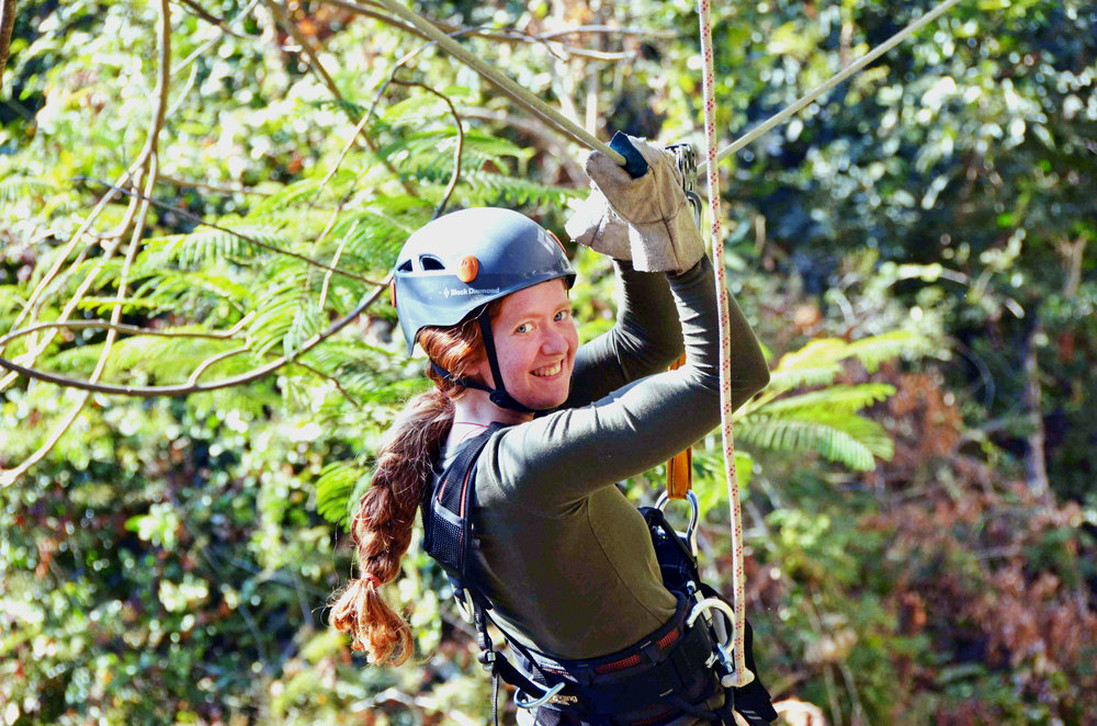 Canopy Tours_13.jpg