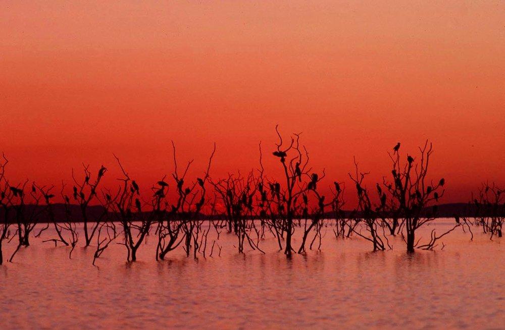 Zimbabwe_Sunset_(8597185).jpg