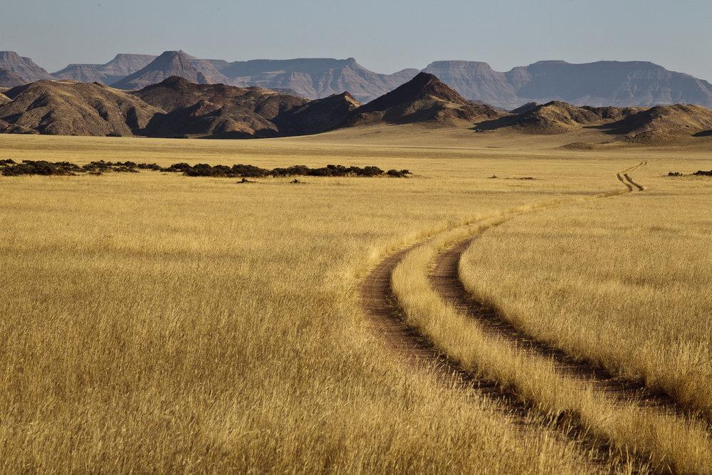 Plains Of Damaraland.jpg