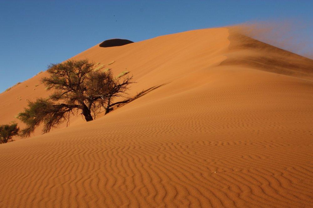 Namib Dunes.jpg