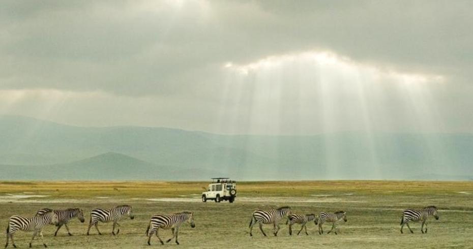 Ngorongoro 2.PNG