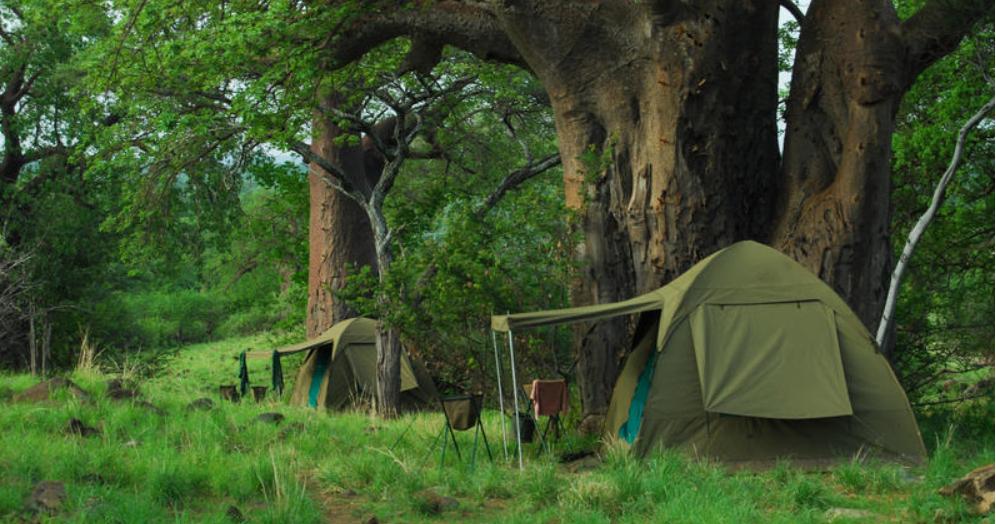 Dorobo Mobile Safaris 6.PNG