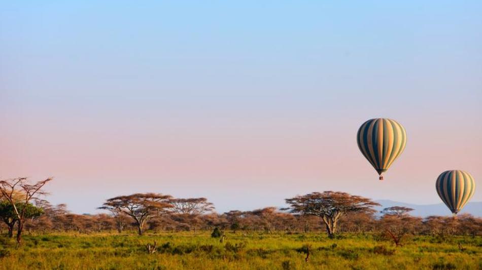 Northern Serengeti 4.PNG