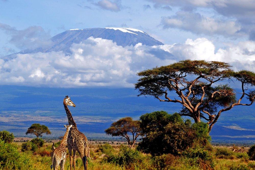 Mt-Kilimanjaro-natural-wonders.jpg