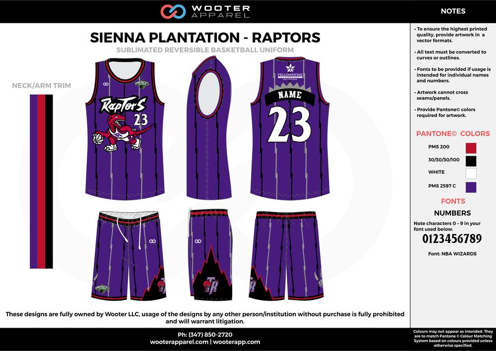 Sienna Plantation - Summer Basketball League - Raptors - Sublimated Reversible Basketball Uniform - 2017 2.png