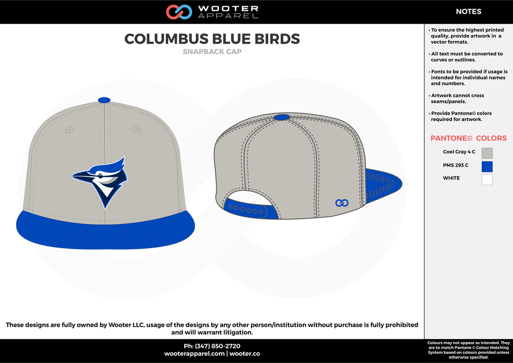 COLUMBUS BLUE BIRDS Blue Gray and White Basketball Snapback Hat and Cap