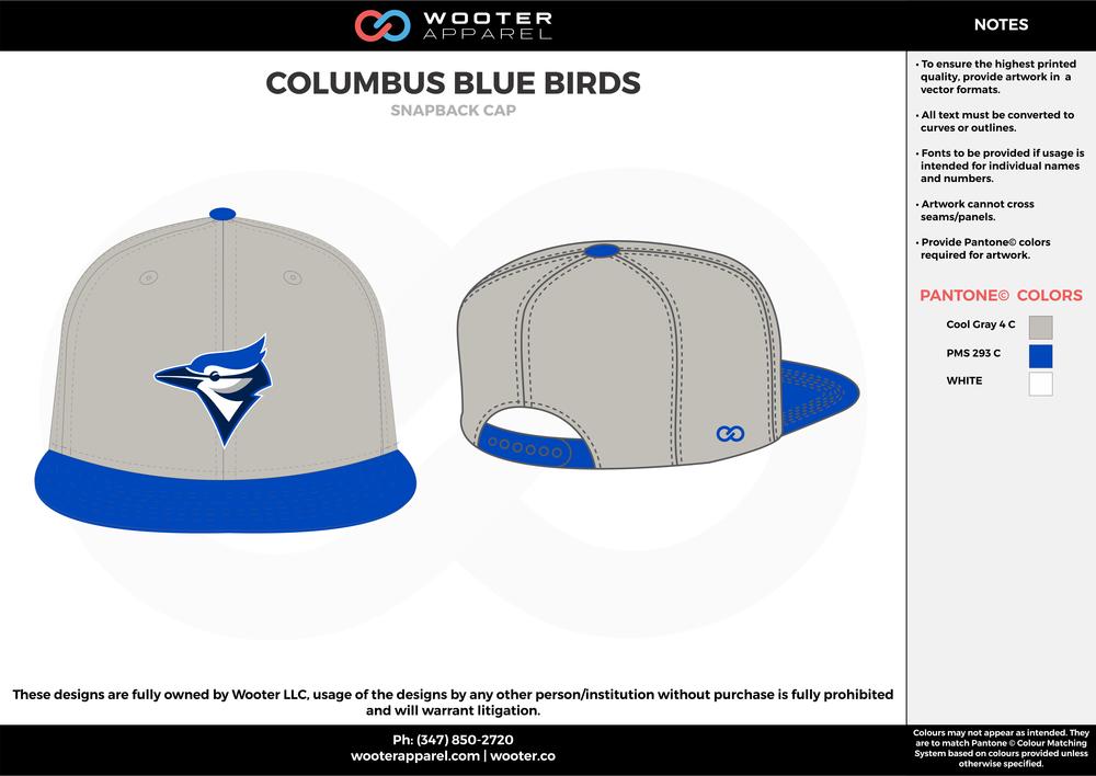 Columbus Blue Birds - Snapback Cap - 2017.png