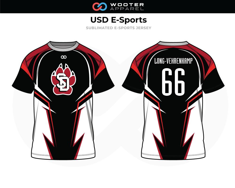 2019-01-25 USD E-Sports B.png