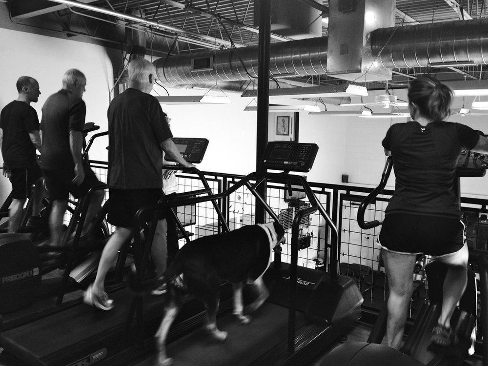 Austin Fitness Clinic - Upstairs.jpg