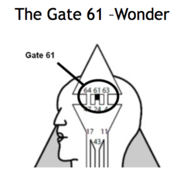 Gate 61.png