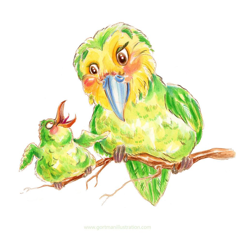 Animal-Alphabets---Kakapo-web.jpg