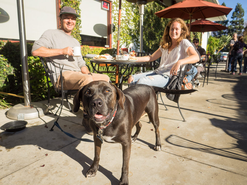 Jason and Katherine Lesh with their dog Trey, also know as Bob, at Jack's Bistro in Carpinteria.