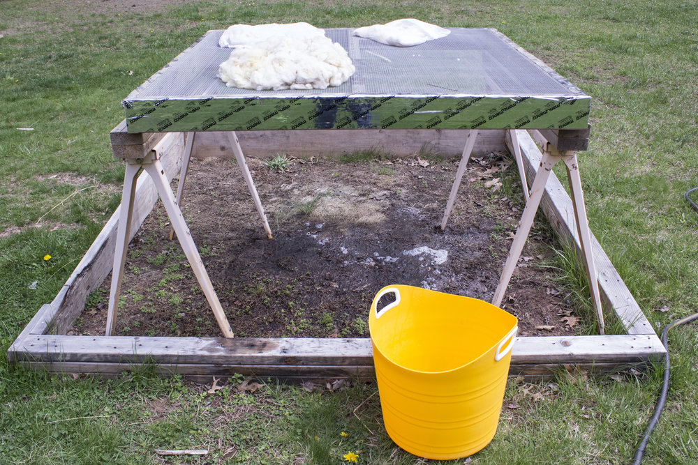 "My ""washing station."" The fleece was not washed in bags, but the alpaca was (which is what's drying in the back). This was a wading pool for the kids last summer, and this year will be a veggie box, but for now it works to contain the mud."