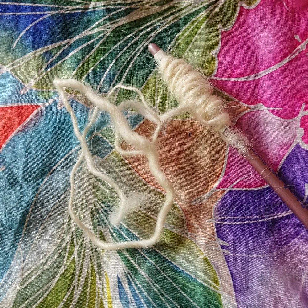 starmagnolias-rackaspin