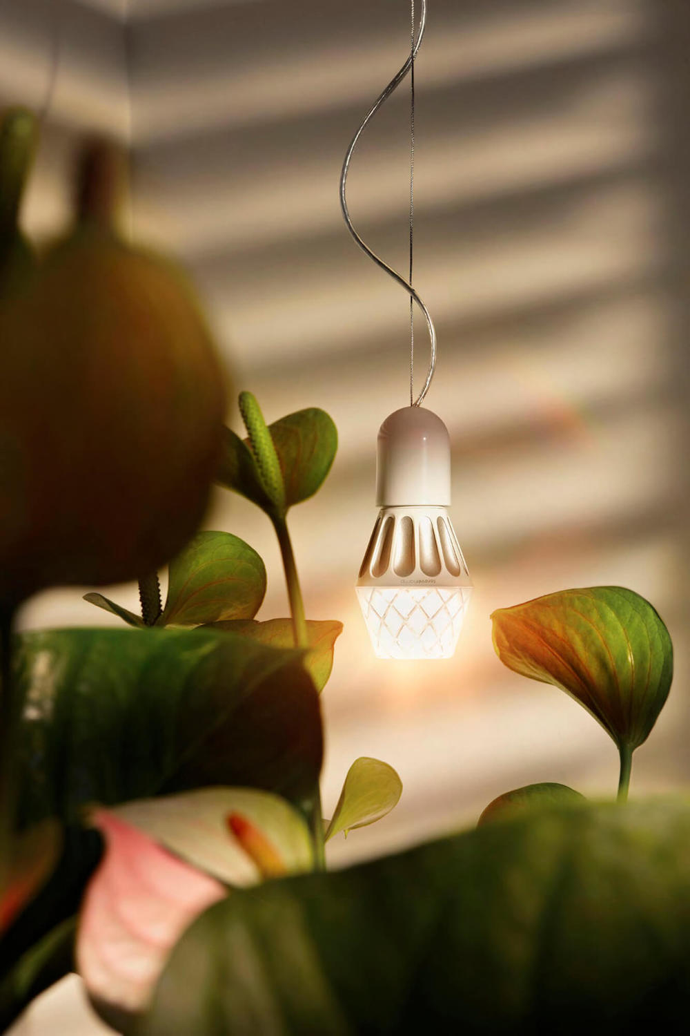 AlessiLux Vienna LED light bulb