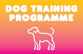 Dog training programme.jpg