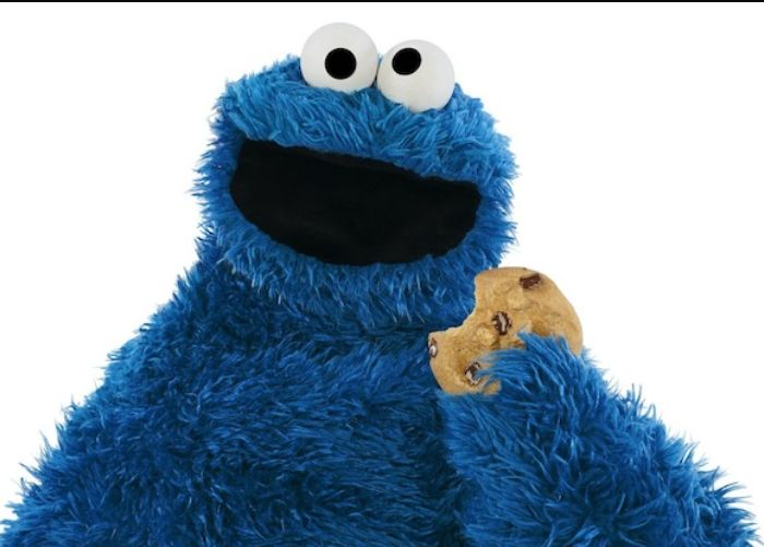 BLOG- Cookie Monster