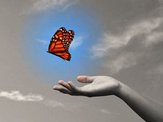 BLOG-LET GO BUTTERFLY