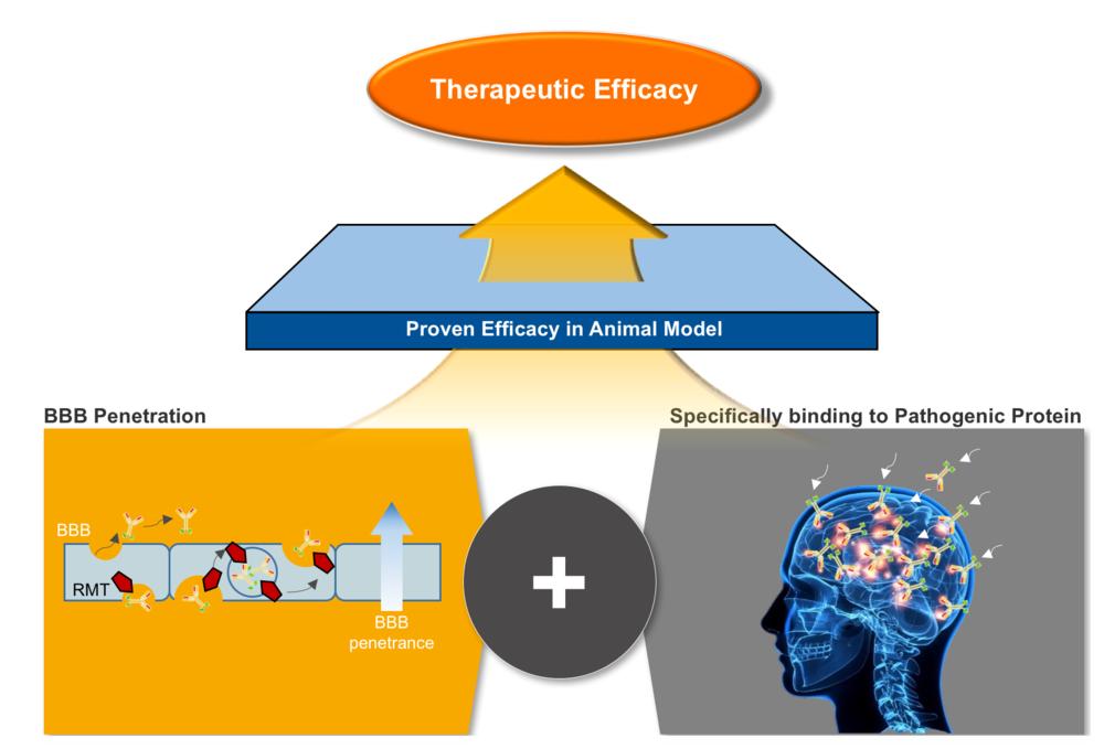platform-neurology strat.png