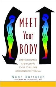 Meet Your Body.jpg
