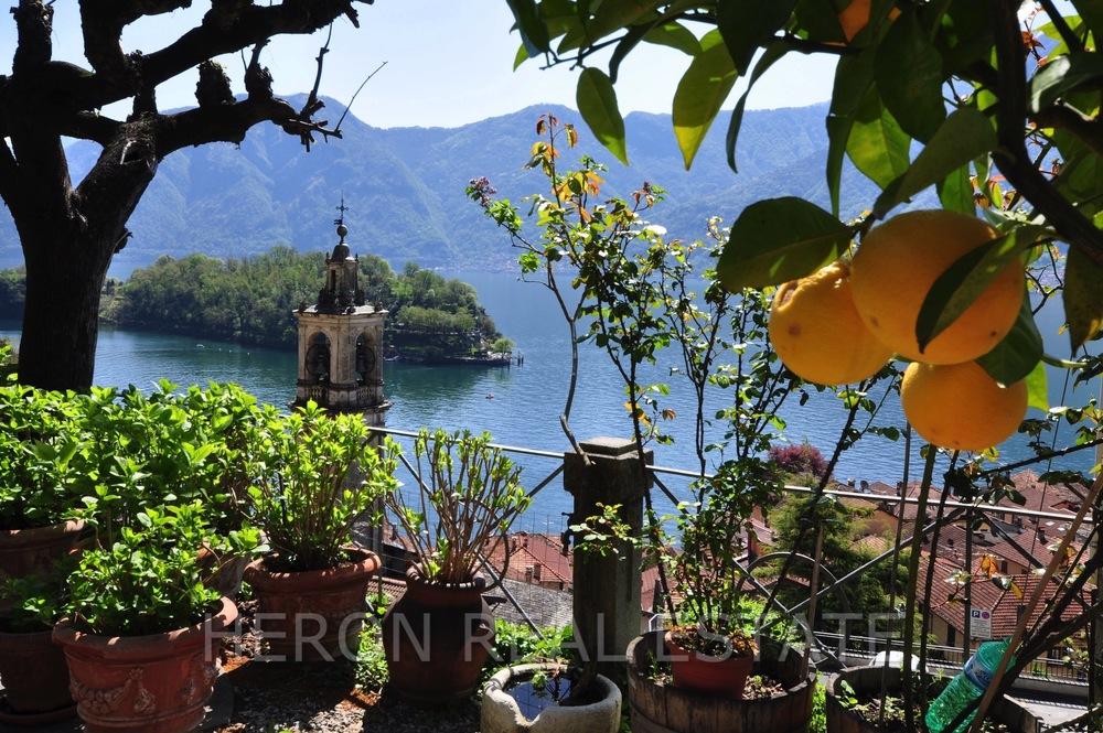 Lake Como citrus