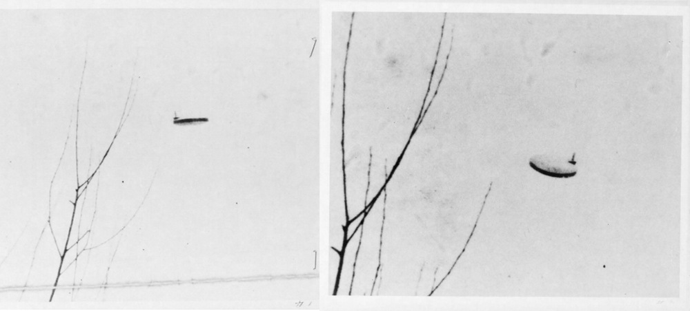 """These pictures taken in Michigan in 1967 were """"debunked"""" by Project Blue Book saying there was """"Insufficient Data"""" because the photographer refused to release the original prints. (Really? Who can blame them? lol)"""