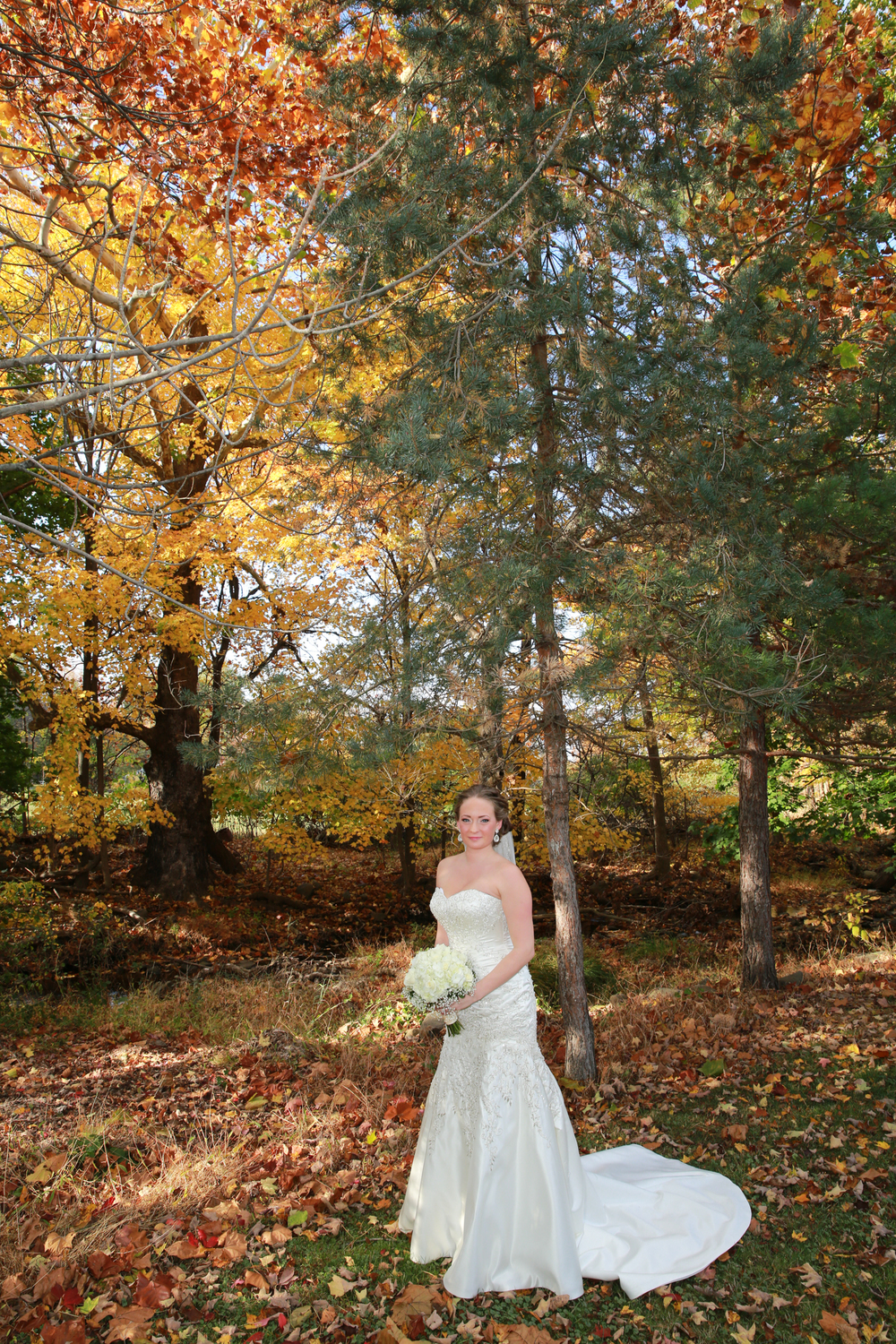 Photo of the perfect fall portrait of the bride.