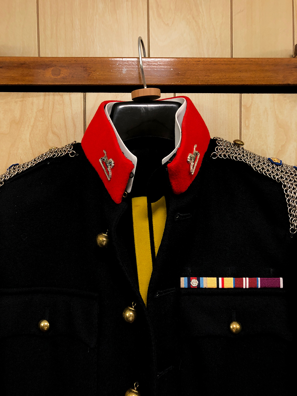 The Queen's Royal Hussars Coat