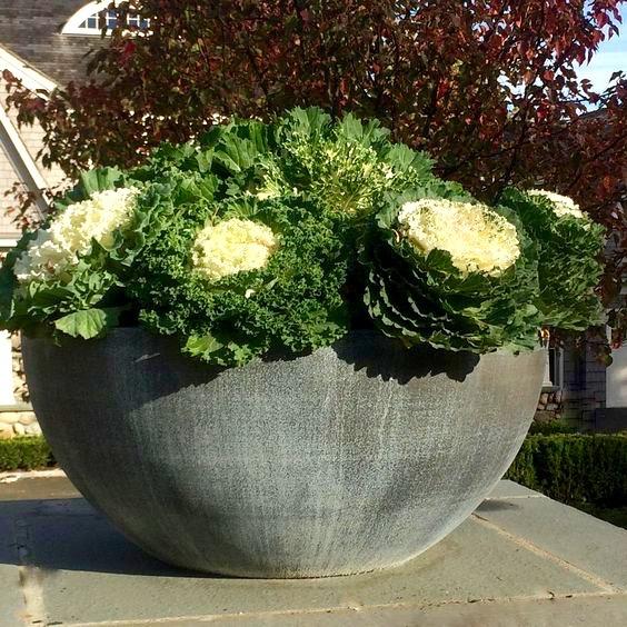 Zinc Planting Bowl Robin Kramer Garden Design  http://www.robinkramergardendesign.com/rkgd-blog/