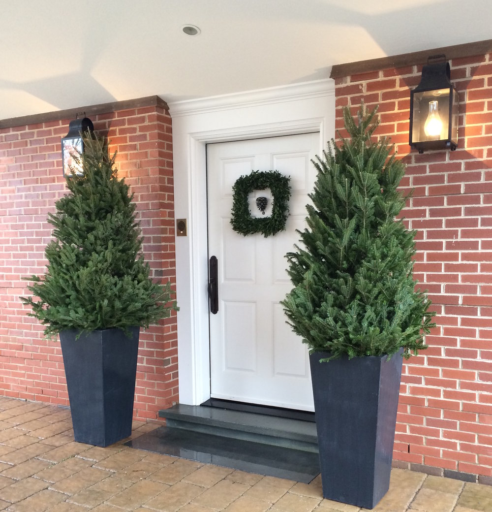 Evergreen Trees in Planters Robin Kramer Garden Design Blog http://www.robinkramergardendesign.com/rkgd-blog/