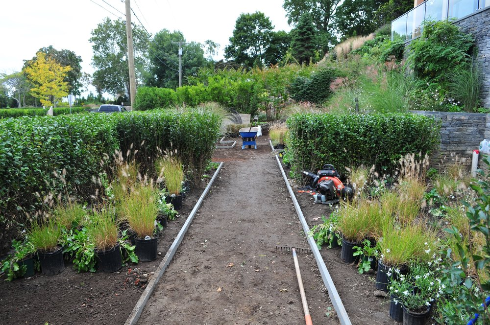 Planting beds with Hameln grasses and perennials are established, and stone edging installed to separate the pathway from the planting areas....