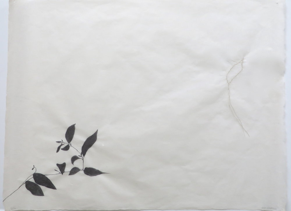 Villa  (in private collection) Graphite and embroidery on Sekishu, 19 x 25 inches, 2015.