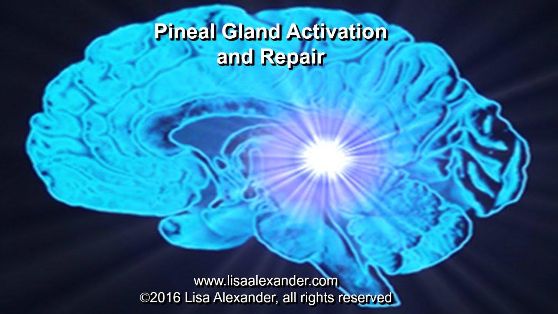 Pineal Gland Activation Meditation Cd Lisa Alexander