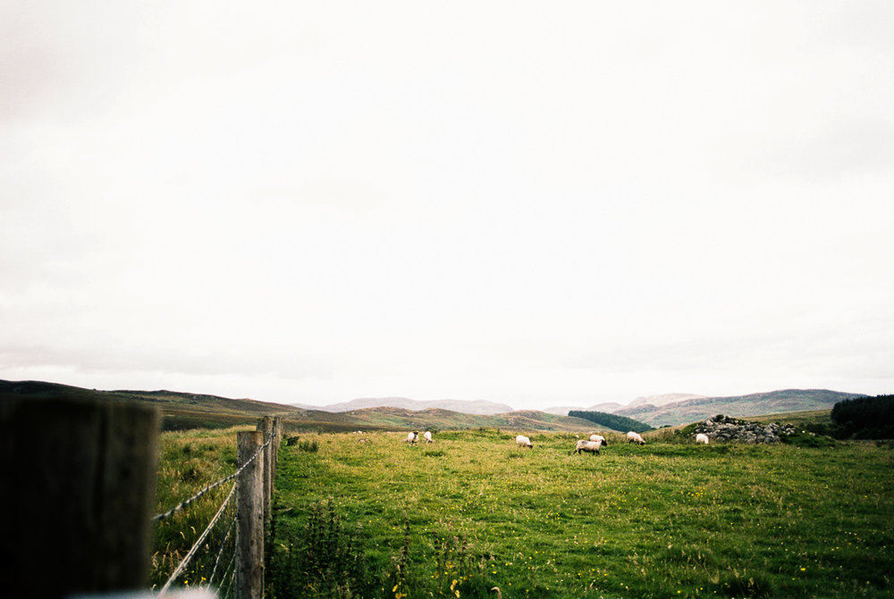 Scotland-Trip-Day3-5-9.jpg