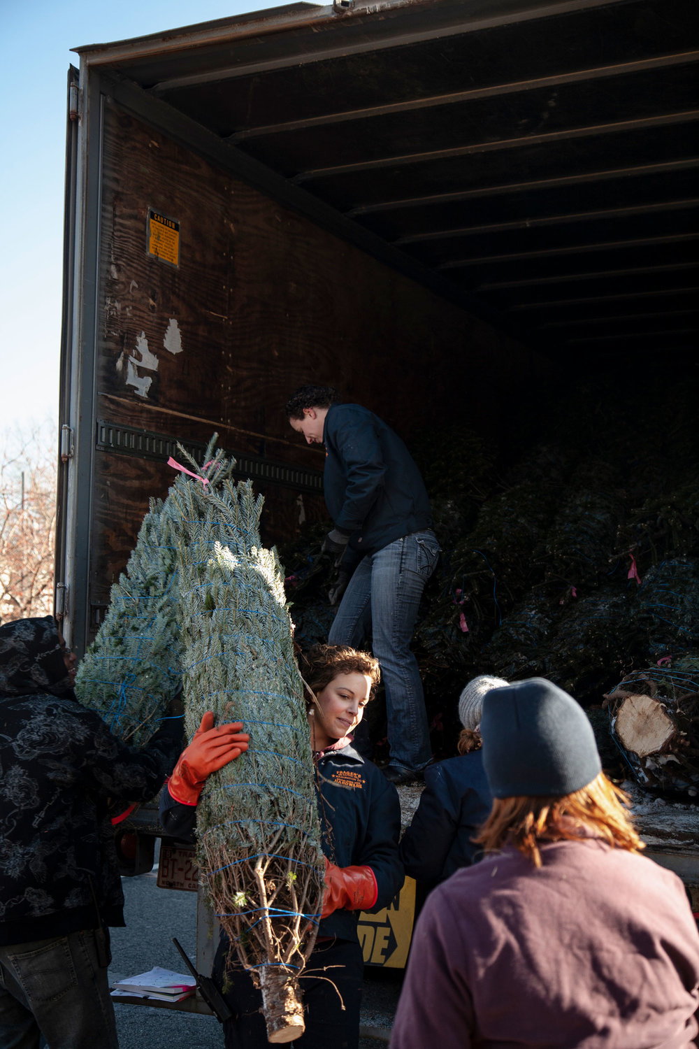 Journey of an Xmas Tree for The Washington Post Magazine