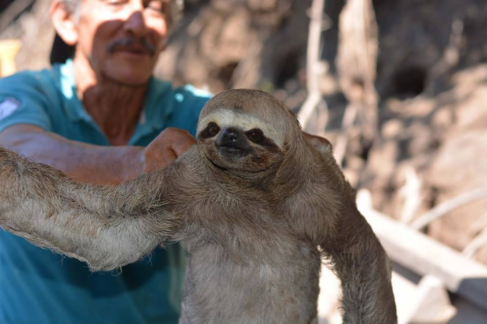 Gilber holding a sloth