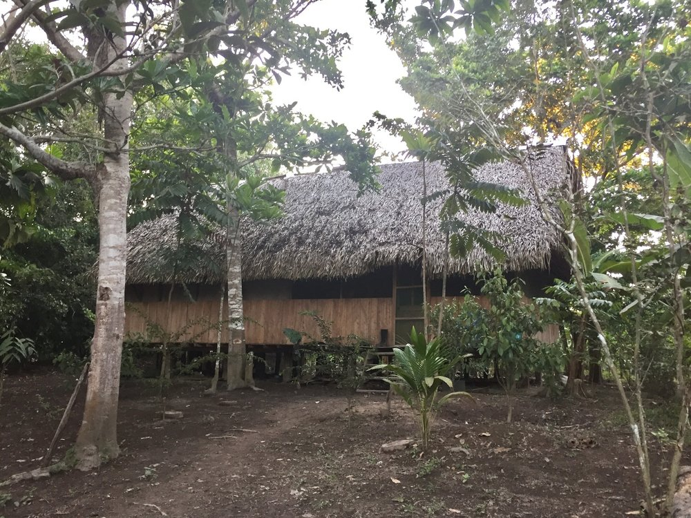 village hut.jpg