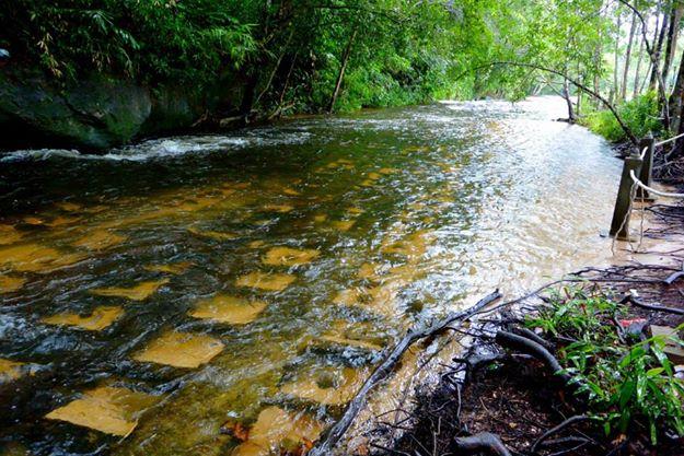 Lingas River