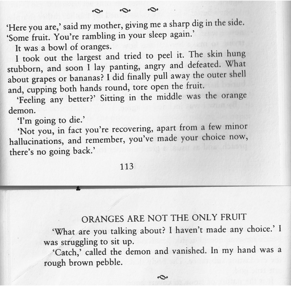 Excerpt from Oranges Are Not The Only Fruit