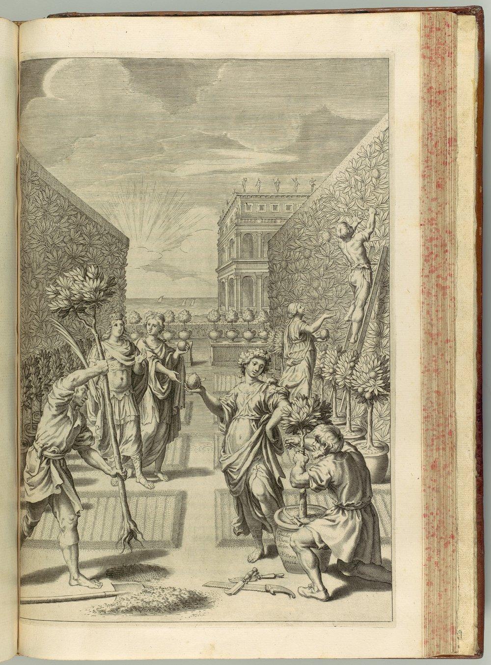 Hesperides sive de Malorum Aureorum cultura et usu. Libri Quatuor by Giovanni Battista