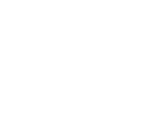 Ecomama - Amsterdam's boutique hostel