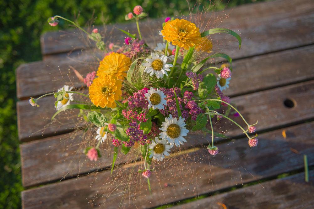 pure pollen_-39.jpg