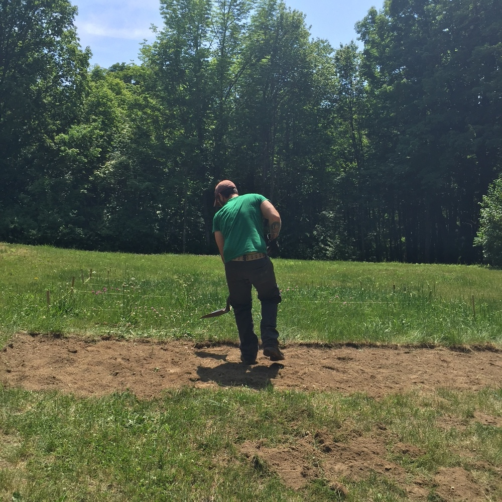 Nic digging out grass. We would have loved to made beds right in our yard, but our soil is too rocky and sandy for what we wanted to grow. Our hope is to remediate the soil in other spots on our property to support things like wildflowers and squash.