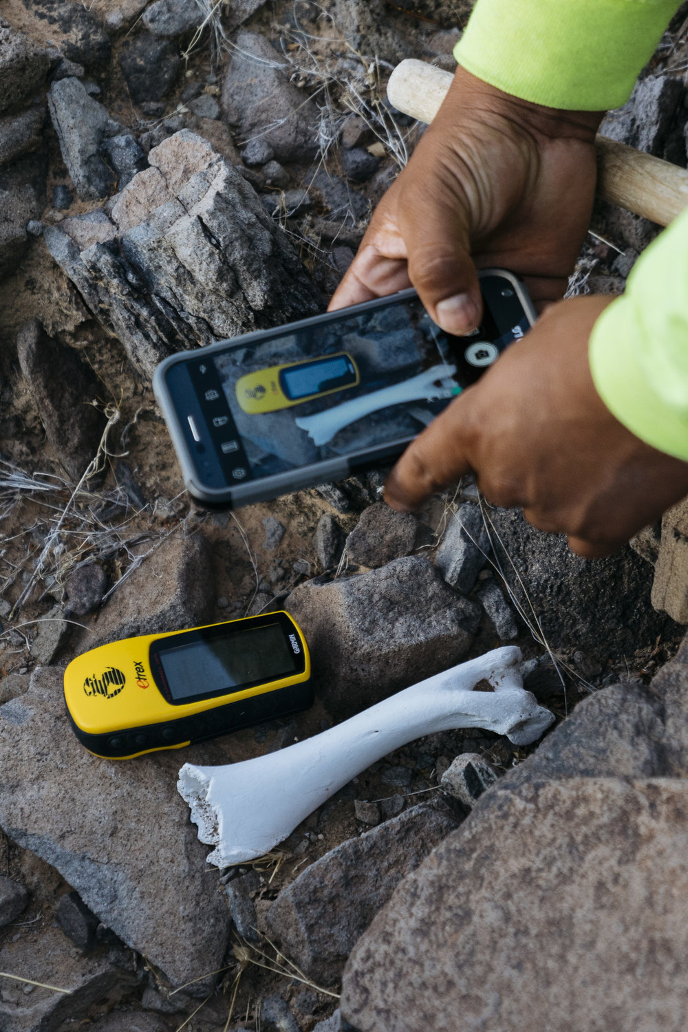 IMAGE CAPTION:  An Aguilas Del Desierto volunteer photographs GPS coordinates of an unidentified bone located in the Sonoran Desert. Because human remains can be the scene of a crime, volunteers photograph and document the locations of any remains and report the information to Border Patrol.