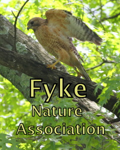 Fyke Nature Association