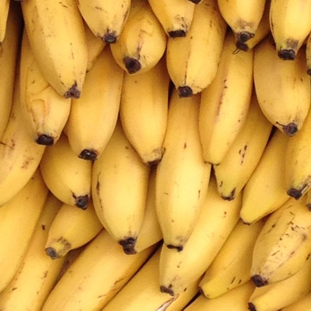 Bananas of new york biocorpaavc